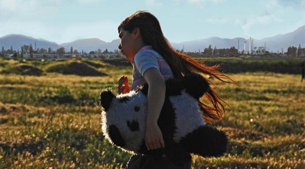 Se estrena film chileno Perro Muerto