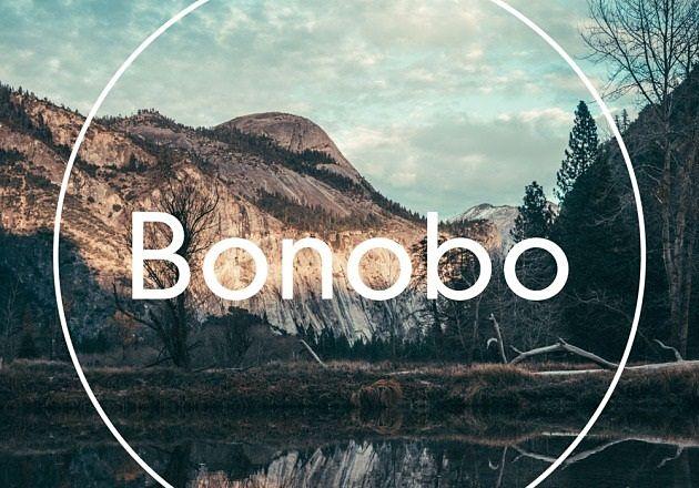 El show del dj británico Bonobo cambia de recinto