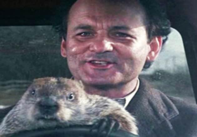 Homevideo: El día de la marmota